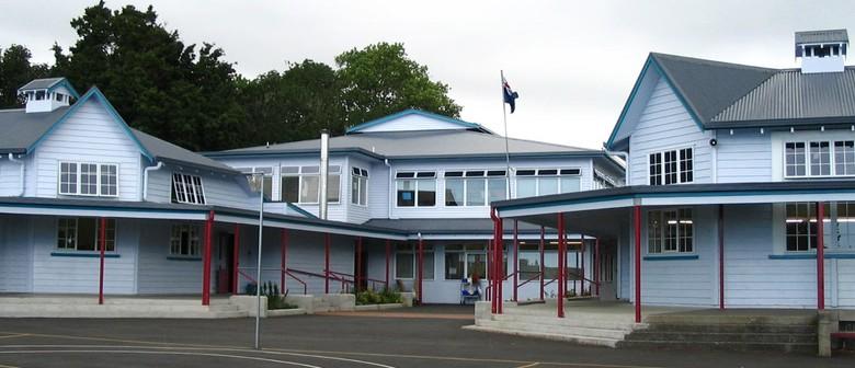 Pt Chevalier School