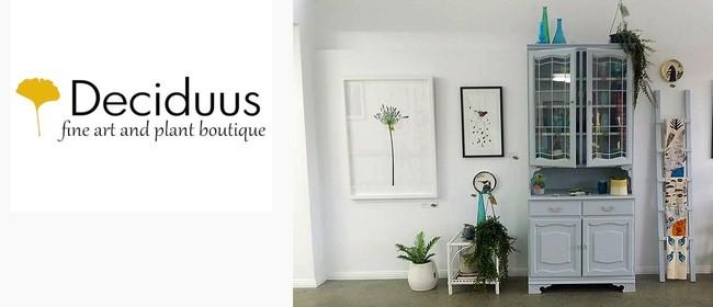 Deciduus - fine art and plant boutique, Tirau