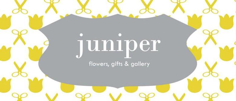 Juniper Gallery