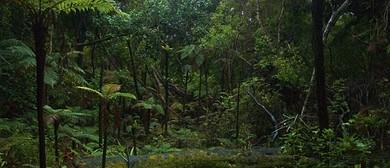 Ulva Island Open Sanctuary