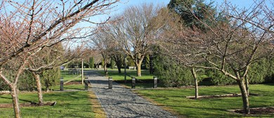 Featherston's Camp - Roadside Stories