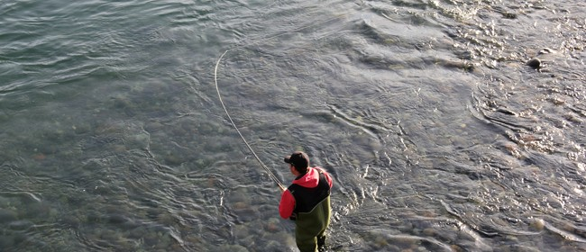 Tongariro Trout Fishing - Roadside Stories