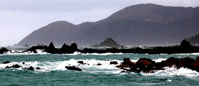 The Dangerous Cook Strait - Roadside Stories