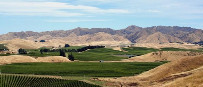 Wine Success for Blenheim - Roadside Stories