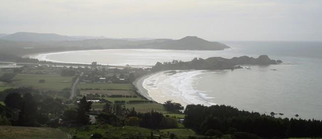 Seacliff and Karitāne - Roadside Stories