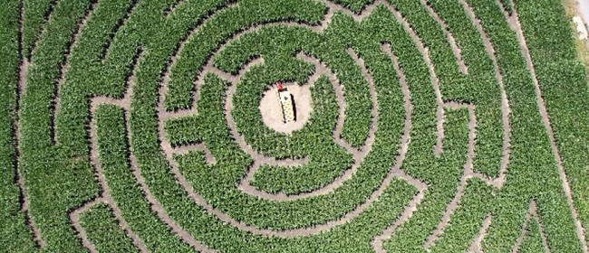 Tothill's Mazes