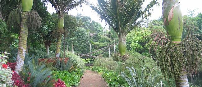 Gardenza Gardens & Nursery