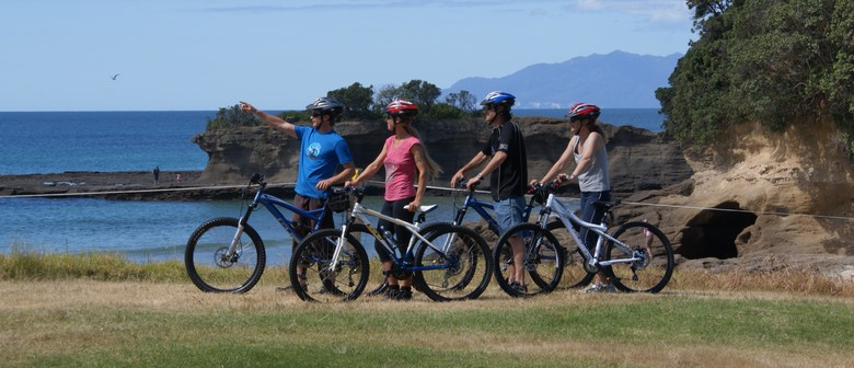 Matakana Bicycle Hire