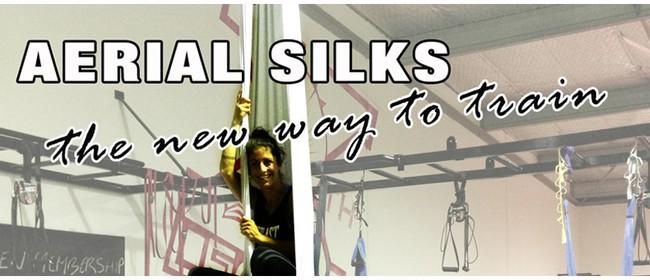 Tauranga Aerial Silks