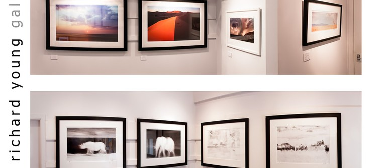 The Richard Young Photography Gallery