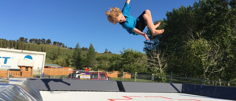 Air Shed Trampoline