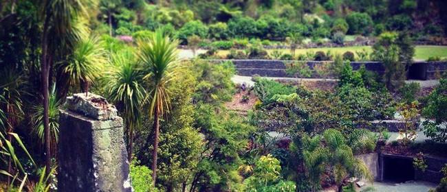 Whangarei Quarry Gardens