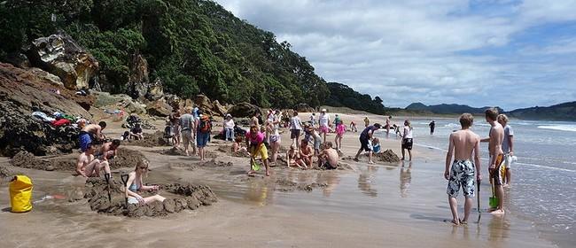 Hot Water Beach Natural Hot Springs