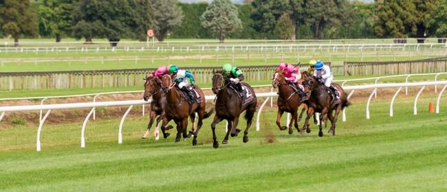 Tauranga Racecourse